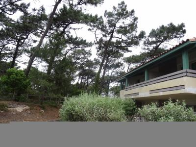 Rare Superbe T4 avec vue forêt 300m de la plage de Moliets