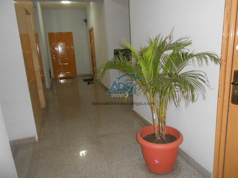 A louer à la Gombe, appartement meublé de 3 chambres
