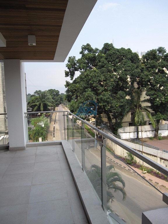 Magnifique penthouse de 4 chambres à la Gombe