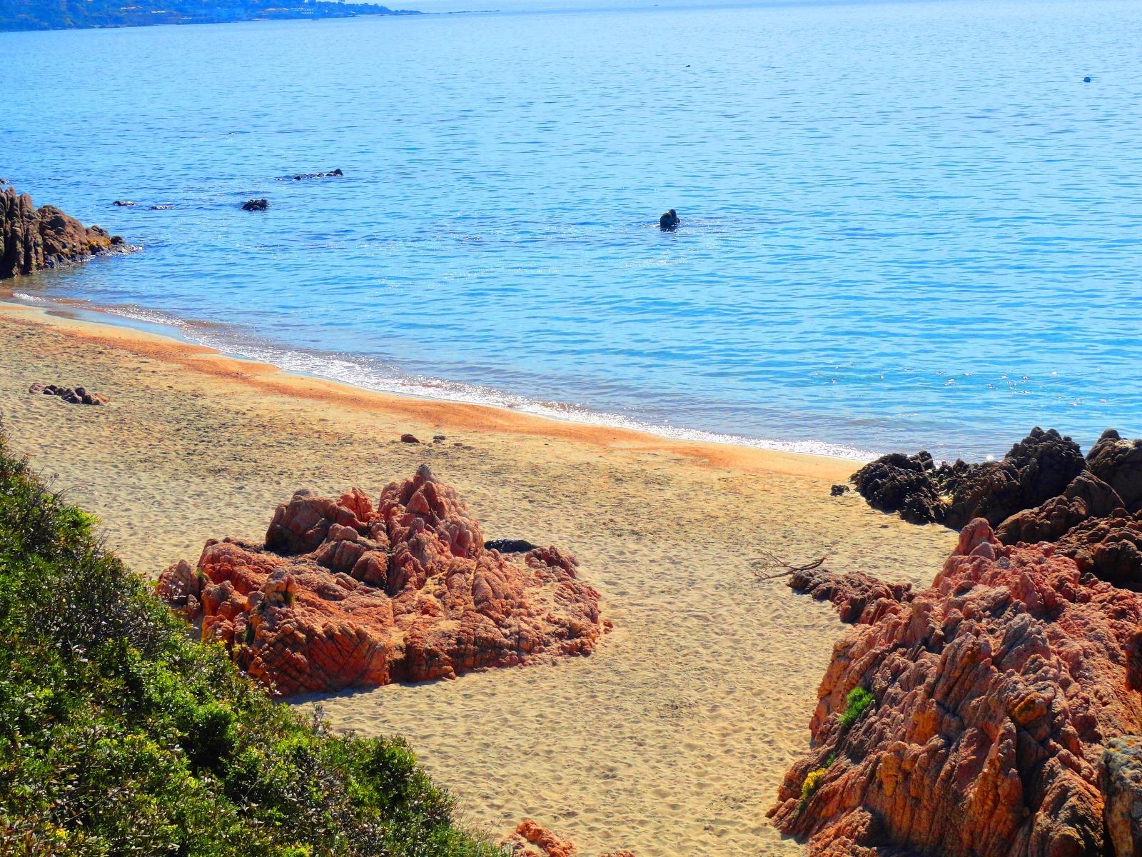 Corse du sud ajaccio magnifique pieds dans l eau dominant for Achat maison corse du sud