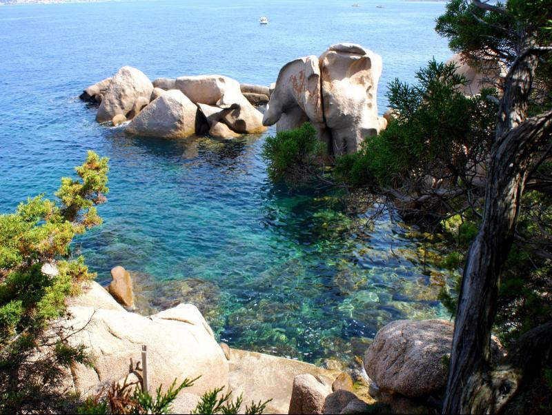 Corse du sud rare bien d exception pieds dans l eau for Achat maison corse