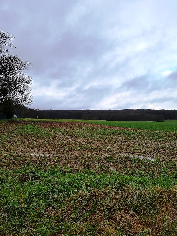 Pont sur Yonne, terrain à bâtir de 1633 m² environ
