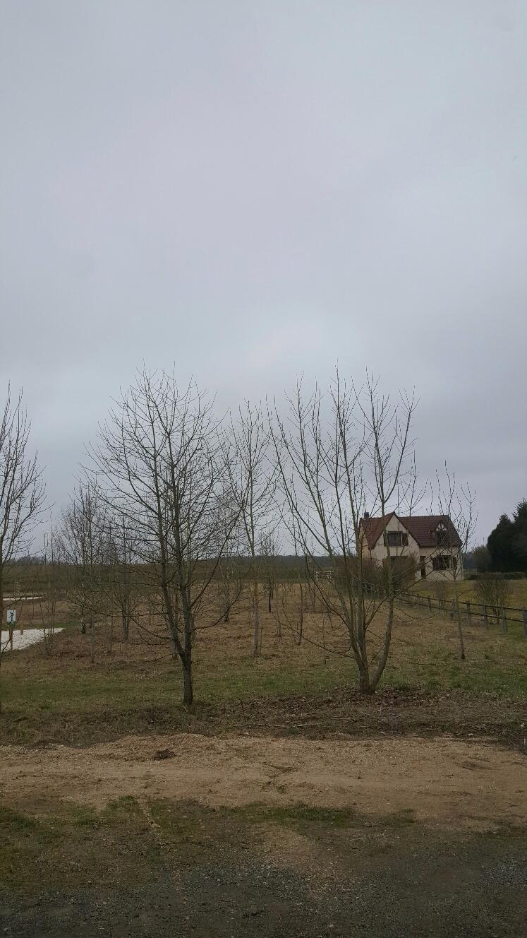 Aux portes de Villeneuve la Guyard, beau terrain à bâtir de près de 1600 m².
