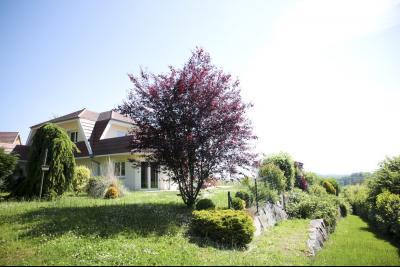 Vue: Vue depuis le jardin, STERNENBERG - 20 minutes de Mulhouse, 5 minutes A36