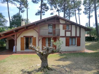 Villa landaise - 100 m² - Messanges