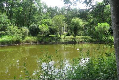 Environnement idyllique - Moliets