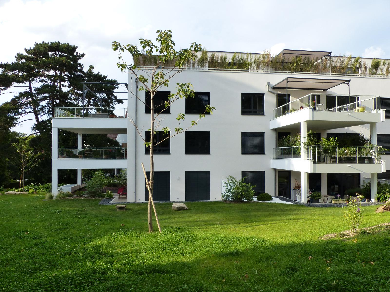 rebberg mulhouse appartement. Black Bedroom Furniture Sets. Home Design Ideas