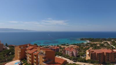 Appartement 2 pièce(s)  de 46 m² env. Agence du sacré coeur, Corse du sud, immobilier Ajaccio