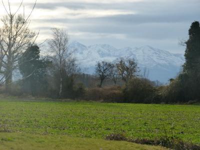 Vue: Proche SOUMOULOU - Vente terrain, Proche SOUMOULOU - Vente Terrain hors lotissement - Vue Pyrénées