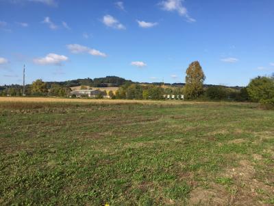 Vue: Proche PAU - Vente terrain viabilisé, Proche PAU - Vente Terrain de 1320 m² plat - Viabilisé - Vue Pyrénées