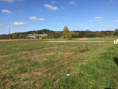 Vue: Entre BORDES et PAU - Vente terrain viabilisé, Entre BORDES et PAU - Vente Terrain de 1630 m² plat - Viabilisé - Vue Pyrénées