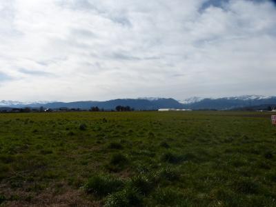 Vue: BORDES - Rare Vente terrain viabilisé plat avec vue panoramique Pyrénées, BORDES - Rare Vente terrain viabilisé plat avec vue panoramique Pyrénées