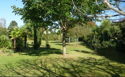 NAY - Vente Terrain à deux pas du centre de Nay Agence immobilière Libre-Immo, Pyrénées-Atlantiques, à Nay et Pau