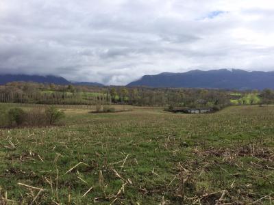 Terrain BUZY, Agence Immoblière à Nay et Pau, Libre-Immo, Pyrénées-Atlantiques