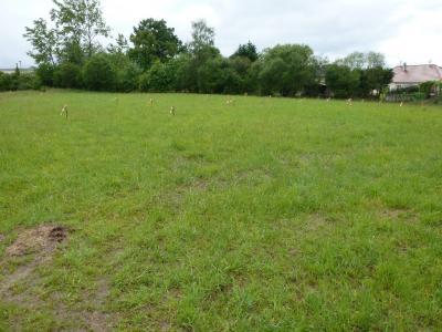 SERRES CASTET, A vendre dernier terrain plat viabilisé! Agence immobilière Libre-Immo, Pyrénées-Atlantiques, à Nay et Pau