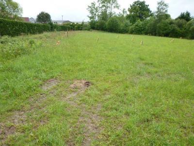 Vue: Terrain plat à SERRES CASTET, SERRES CASTET, A vendre dernier terrain plat viabilisé!