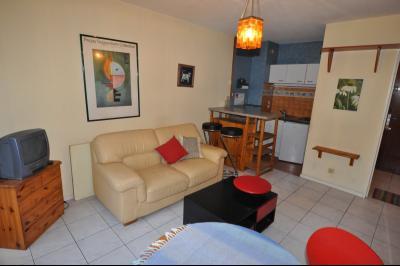 Appartement 2 pièce(s)  de 35 m² env. , Agence immobilière Libre-Immo dans la région Pyrénées-Atlantiques à Nay et Pau