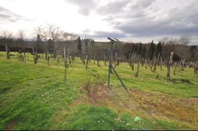 Vue: JURANCON, a vendre maison 7 pièces - Vignes, COTEAUX JURANCON, à vendre, maison de 6 chambres, domaine de 5276 m² avec vignes
