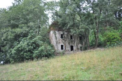 ARTIX, A VENDRE, Maison à rénover sur 8 740 m² de terrain Agence immobilière Libre-Immo, Pyrénées-Atlantiques, à Nay et Pau