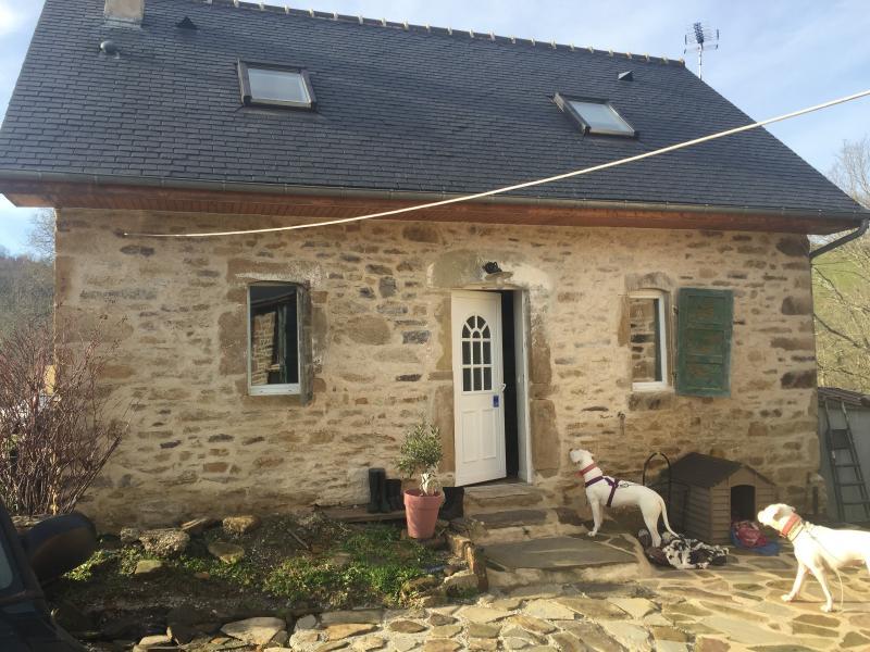 Proche NAY - Vente Ensemble de 2 maisons anciennes rénovées, Agence immobilière Libre-Immo dans la région Pyrénées-Atlantiques à Nay et Pau