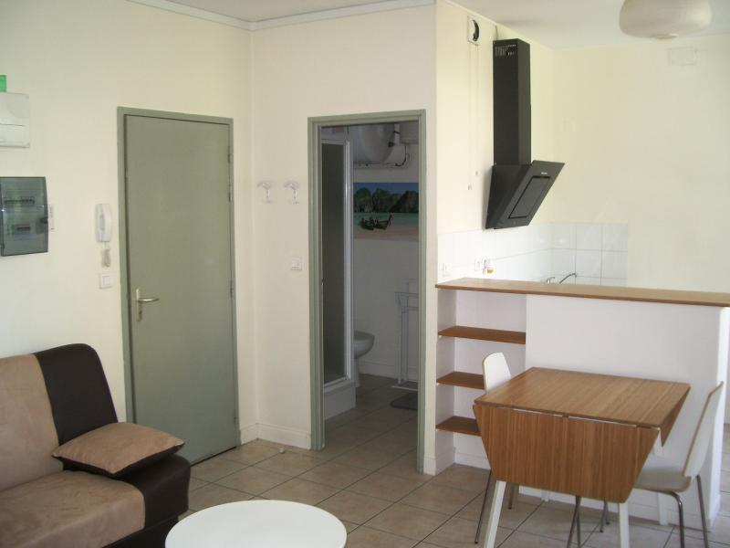 NAY Centre - Location studio meublé, Agence immobilière Libre-Immo dans la région Pyrénées-Atlantiques à Nay et Pau