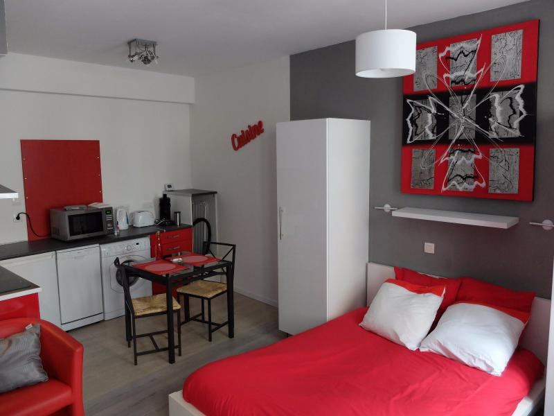 Exclusivité Centre de PAU, Studio meublé idéal pour investisseur, Agence immobilière Libre-Immo dans la région Pyrénées-Atlantiques à Nay et Pau