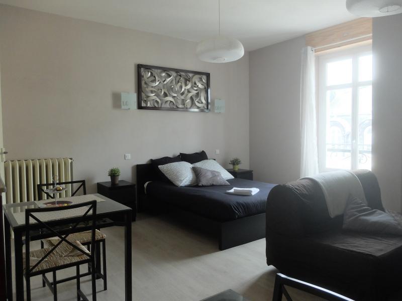 EXCLUSIVITÉ PAU CHÂTEAU, A VENDRE, T1 de 39 m² meublé, Agence immobilière Libre-Immo dans la région Pyrénées-Atlantiques à Nay et Pau