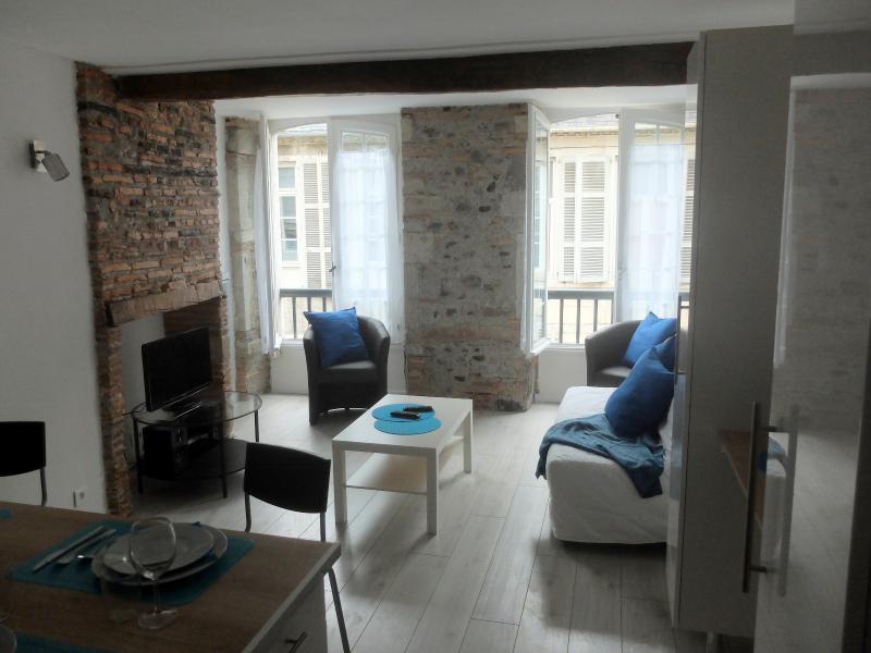 EXCLUSIVITÉ PAU CHÂTEAU, A VENDRE, T2 de 50 m² vendu meublé, Agence immobilière Libre-Immo dans la région Pyrénées-Atlantiques à Nay et Pau