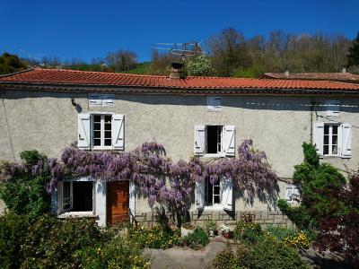 Vue: façade principale, Maison de moyenne montagne proche de Foix, pleine de charme