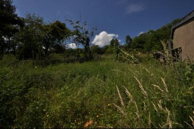 Vue: jardin, Maison de moyenne montagne proche de Foix, pleine de charme