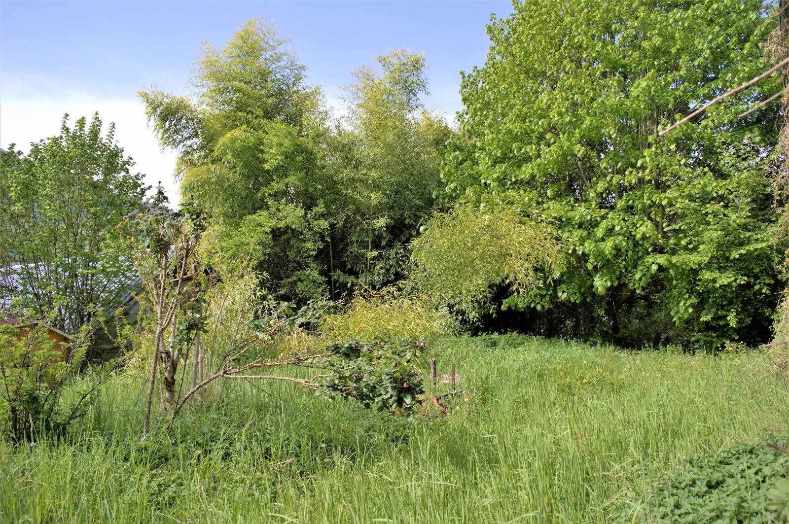Maison avec grange et jardin ma maison for Jardin et maison magazine