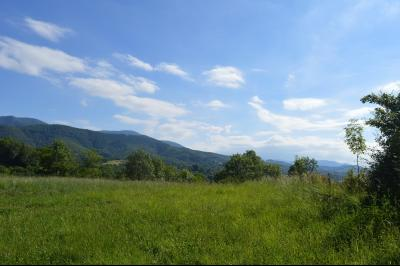 Vue: terrain, PROCHE SAINT-GIRONS