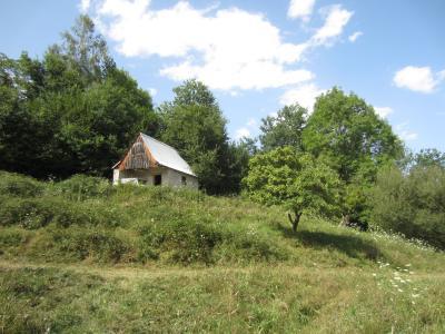 Vue: vue Grange et terrain, Grange � r�nover Sentenac D