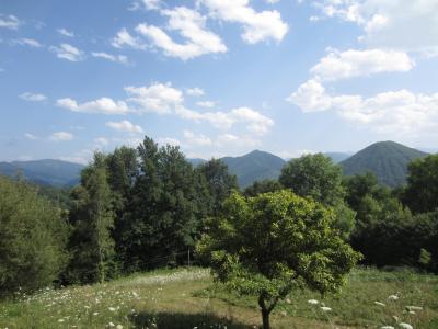 Vue: vue terrain montagne, Grange � r�nover Sentenac D