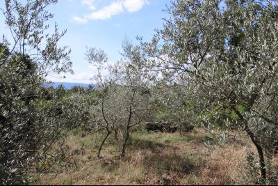 Terrain constructible à vendre à Gordes dans le Luberon, 3500m² GORDES