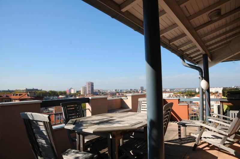 Superbe T2 Meublé avec Terrasse sur les toits de Toulouse TOULOUSE