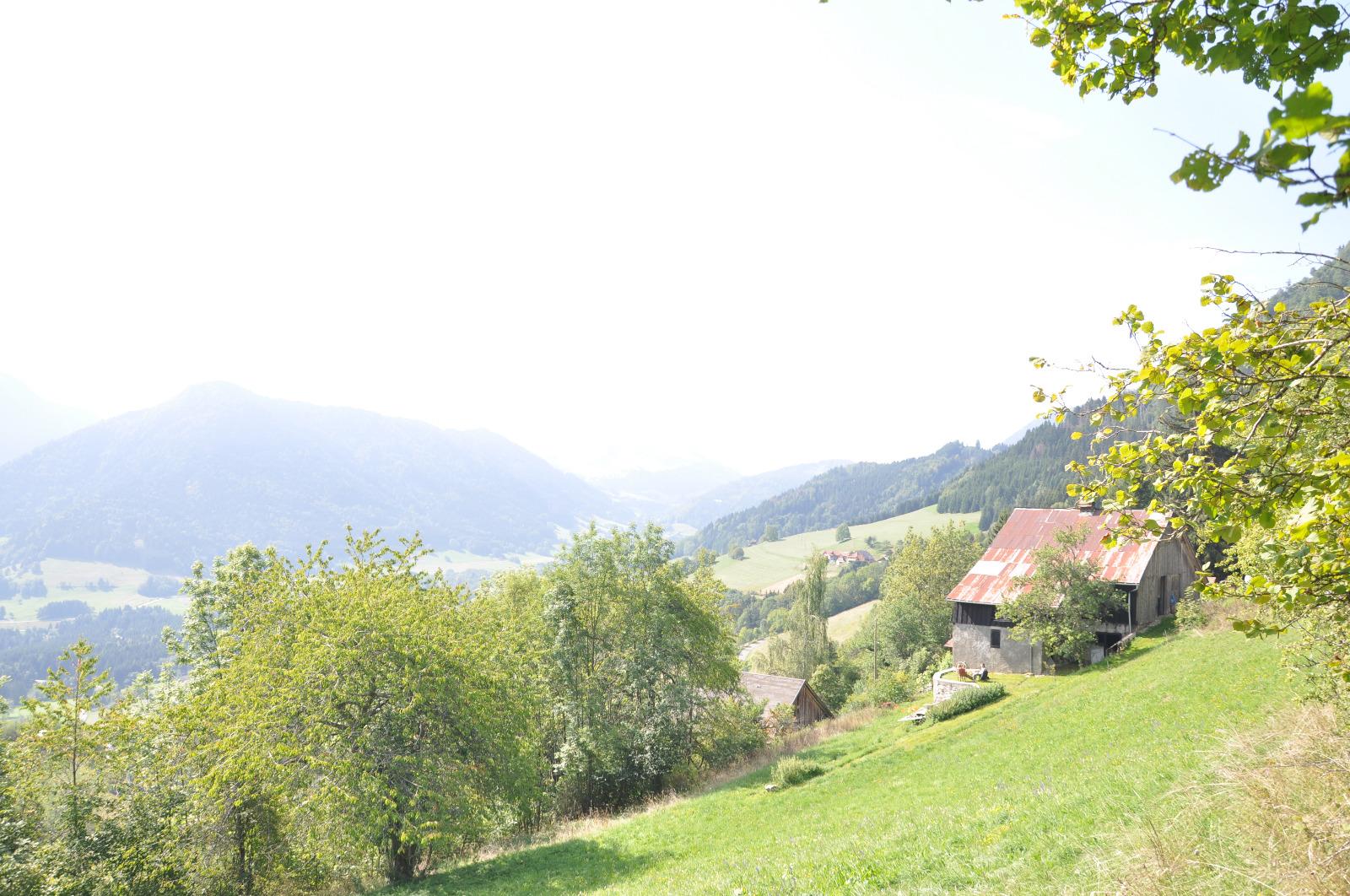 chalet d 39 alpage vendre en vall e verte sur 3141m de terrain mab immobilier. Black Bedroom Furniture Sets. Home Design Ideas