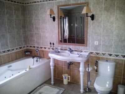 Vue: Propriété à Saint Rémy de Provence salle de bains , Un mas provençal à vendre sur un parc de 3 hectares et demi à Saint Rémy de Provence