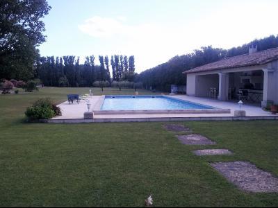 Vue: Propriété à Saint Rémy de Provence piscine pool house, Un mas provençal à vendre sur un parc de 3 hectares et demi à Saint Rémy de Provence