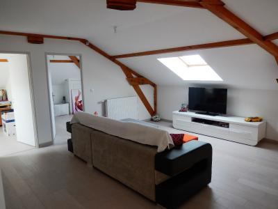 Vue: Maison Juvigny Mezzanine, Villa contemporaine à vendre à Juvigny proche douane