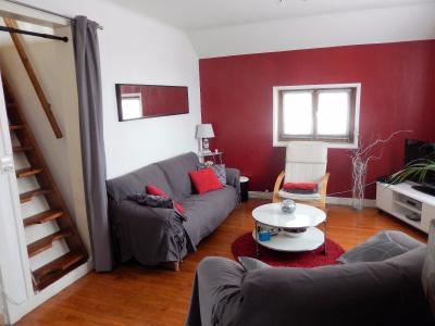 Vue: Appartement T3Bis Annemasse Salon, Appartement de Type 3 Bis avec terrasse et jardin à vendre dans une maison à Annemasse