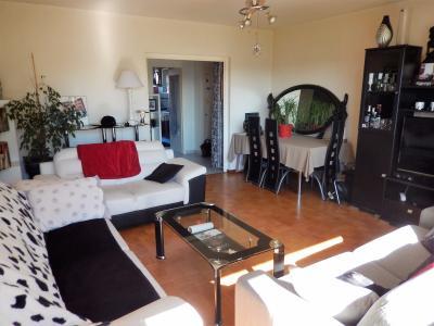 Vue: Appartement T3 Annemasse Salon, Grand T3 de 82m2 à vendre à Annemasse