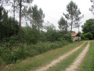 Maison secteur meilhan 60 m� - 4 pi�ces