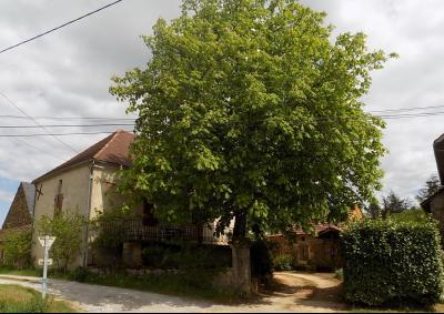Dordogne, bel ensemble en pierre sur 4738 m² de terrain ST AUBIN DE NABIRAT