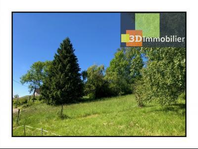 A VENDRE : Terrain constructible de 2200m2 sur la belle commune de Nattages vue sur la Dent Du Chat,
