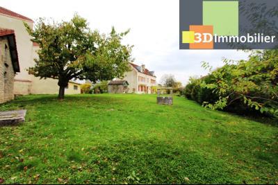 Lons-le-Saunier à 2 pas du centre ville, vends une maison de 12 pièces avec dépendances., VUE TERRAIN