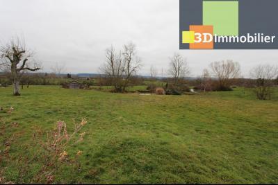 Lons-le-Saunier (Jura), à  vendre maison de caractère, 3 chambres sur terrain clos avec étang, TERRAIN AVEC PETIT ETANG ET VUE DEGAGEE