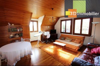 Lons-le-Saunier, à vendre grande maison de 7 chambres, 2 logements possibles, au calme., SEJOUR APPARTEMENT