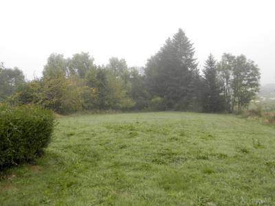 Vente proche LONS LE SAUNIER et LOUHANS (71), maison plain-pied 74.70 m², terrain env. 3500 m², VUE TERRAIN 3500 m² env.