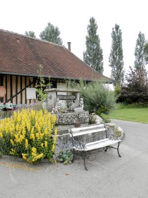 Vente BLETTERANS (39), ferme rénovée de 150 m² sans voisinage proche, terrain 25694 m², COUR AVEC PUITS